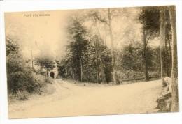 29940  -  Limont Tavier   Pont Des  Busses - Belgique