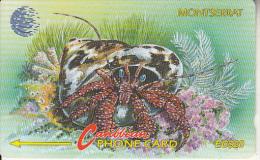 MONTSERRAT ISL.(GPT) - Hermit Crab, CN : 7CMTD, Tirage 5000, Mint
