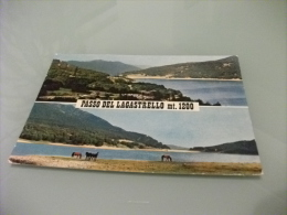 APPENNINO REGGIANO  PASSO DEL LAGASTRELLO  CAVALLI AL PASCOLO LAGO - Reggio Nell'Emilia