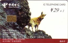 CHINE CHINA BOUQUETINS IBEX MONTAGNE MOUNTAIN 29+1 Y UT SUPERBE - China
