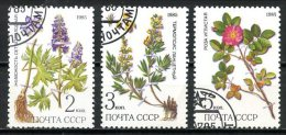 Russie   Y&T   5232 - 5233 - 5234    Obl    ---   Plantes Médicinales : Dictiocarpum - Thermopsis - Rosa - Végétaux