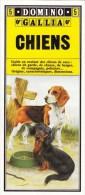 GUIDE COULEUR DOMINO GALLIA N°5 SOUS FORME DE CARTE ROUTIERE 24 PLANCHES 11cmX25cm CHIENS DE RACE GARDE CHASSE BERGER CO - Learning Cards