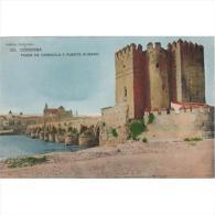 CDBTP5456-LFTM1437 .Tarjeta Postal DE CORDOBA.Torre De CALAHORRA Y Puente Romano, Rio Guadalquivir - Antigüedad