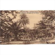 CDBTP5461-LFTM1558 .Tarjeta Postal DE CORDOBA.Plantas,arbolesJARDINES DE LA VICTORIA.Albergue De Los Patos.Cordoba - Córdoba