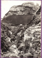 ST-ALBAN-LEYSSE - Les Gorges Du Bout Du Monde Le Château De Chaffardon Le Mont Penney Photo Véritable Circulé  1962 - Sin Clasificación