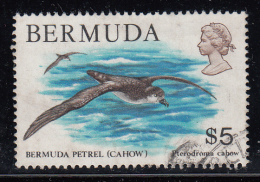 Bermuda Used Scott #379 $5.00 Bermuda Petrel (Cahow) - Bermudes