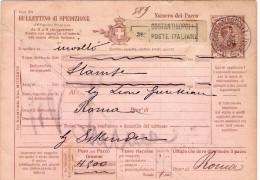 Costantinopoli Su Bollettino Pacchi Di Italia-Alcuni Fori Di Spillo In Alto A Sinistra-Piega Diagonale-VEDERE 2  FOTO- - Bureaux Etrangers