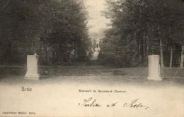 Bree: Souvenir Du Booneput (casino) - Bree