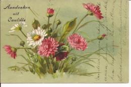Aandenken Uit Caulille - Hamont-Achel