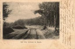 Genk: Les Bois, Environs De Genck - Genk
