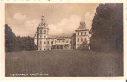 AK 0041  Schloss Traunsee - Verlag Brandt Um 1942 - Traun