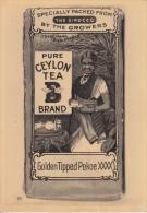 Reclame    Pure Ceylon Tea Brand  Greinstraat 42 Antwerpen          Nr 431 - Publicité