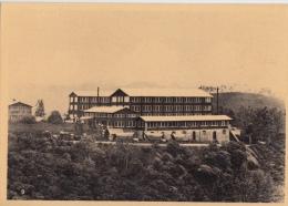 Reclame    Pure Ceylon Tea Brand  Fabriek       Greinstraat 42 Antwerpen          Nr 436 - Publicité
