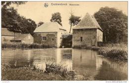 GROBBENDONK - Zicht op de Watermolen - Uitg.  D. Heylen - TOP