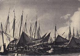 Sfax (Tunisie) - La Flotille Pour La Pêche Aux éponges - Tunisia