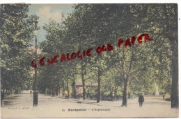 34 - MONTPELLIER -  L' ESPLANADE - Montpellier