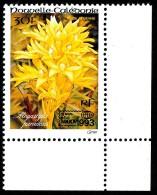 NOUV.-CALEDONIE 1993 - Yv. PA 304 ** TB Cdf   - Orchidée Megastylis. Expo Bangkok'1993 ..Réf.NCE23267 - Neufs