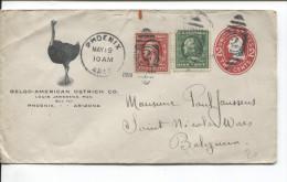 USA PSL Ostrich Co. Phoenix 1911 Duplex Canc. 2 + Phoenix To Belgium Arrival Canc.PR1622 - Entiers Postaux