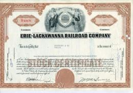ACCIONES TITULOS SHAREHOLDING TITRES 12 SHARES ERIE LACKAWANNA RAILROAD COMPANY YEAR 1964 TBE GECKO - Chemin De Fer & Tramway