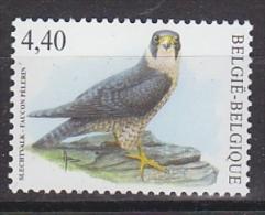 Belgie 2008 Buzin, Slechtvalk 1v ** Mnh (19279C) - 1985-.. Birds (Buzin)