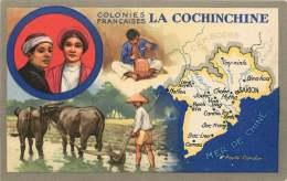 Produits Du Lion Noir -   Carte Publicitaire - Les Colonies Françaises  -- La Cochinchine - Advertising