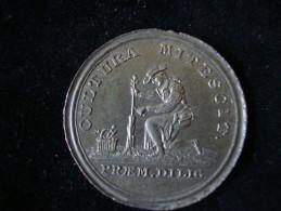 Schweiz  Schulprämie Academie De Lausanne 32 Mm 12,72 Gr. - Jetons & Médailles