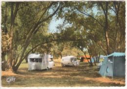 Jargeau : Le Parc Camping En Bordure De LOire - Jargeau