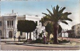 FERRYVILLE PLACE FOCH ET LA MUNICIPALITE - Tunisie