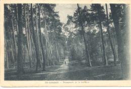 St Arnoult - Promenade De La Garenne - St. Arnoult En Yvelines