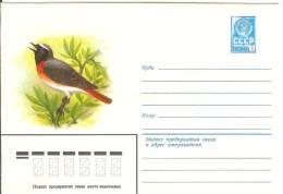 Russia USSR 1979 Fauna Bird Birds Common Redstart - 1923-1991 USSR
