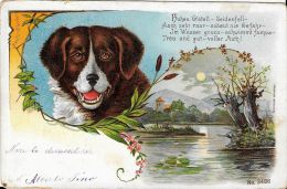 [DC5270] CARTOLINA - CANE - SAN BERNARDO - SVIZZERA - Viaggiata 1899 - Old Postcard - Cani