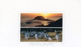Postcard - Phillip Island, Victoria. PHI107 - Australia