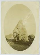 Carnac. Alignements De Menhirs. 1902. - Lieux