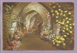 Dépt 49 - MARTIGNE BRIAND - Festival Floral - Perspective Dans Les Souterrains - Sonstige Gemeinden