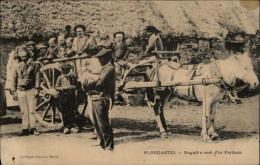 29 - PLOUGASTEL-DAOULAS - Bugale O Vont D'ar Pardoun - Attelage Cheval - Plougastel-Daoulas