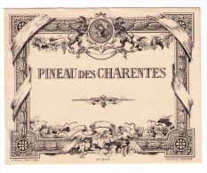 Jolie étiquette Ancienne De Pineau Des Charentes, N°544, L. Ruel, Poitiers - Labels