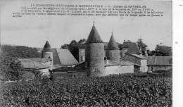 Chateau De CHASSELAS - Sin Clasificación