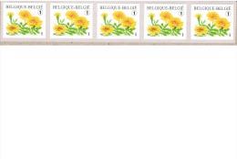Bloemen.  Tagetes Patula.  Zelfklevende Rolzegelsn Niet Genummerd. In Stook Van Vijf. - Rouleaux