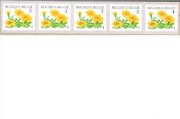 Bloemen.  Tagetes Patula.  Zelfklevende Rolzegelsn Stook Van Vijf Met Nummer. Bande De 5 Avec N° - Rouleaux