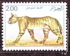 Algérie - Timbre Oblitéré N° YT 860. - Algerien (1962-...)