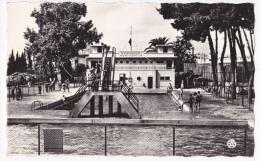 Sidi Bel Abbès - La Piscine Municipale (animée) - Circulé Sans Date, Sous Enveloppe - Sidi-bel-Abbes