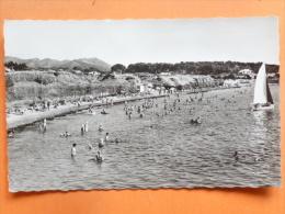 V09-83-V-CPA-var-le Brusc-plage -- Carte Photo--animee--voilier-- - Non Classés