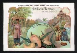 CHROMO, CHOCOLAT POULAIN,  OISEAU, FLEUR ORANGE, SERIE: LA ZONE TORRIDE ET SES PRODUITS, LE MANGUIER - Poulain