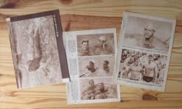 Sport Natation - Dossier Année 1949 / Alex Jany Allan Stack Valleray Lusien Szegedy Ford Ris  / VP 146/3 - Sin Clasificación
