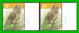 BUZIN - 4218** Hibou Des Marais / Velduil - PL 1+2 - 1985-.. Birds (Buzin)