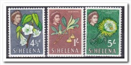 Sint Helena 1961, Postfris MNH, Flowers - St. Helena