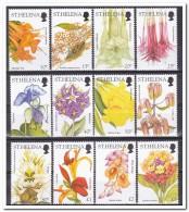 Sint Helena 2003, Postfris MNH, Flowers - Sint-Helena