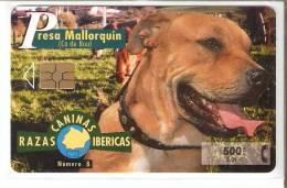 P-426 Nº8 PRESA MALLORQUIN DE LA SERIE RAZAS CANINAS IBERICAS DE TIRADA 5300 (PERRO-CAN-DOG) - Espagne