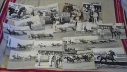 équitation TOULOUSE La Cépière Gros Lot De + De 160 Photos / Années 1979 à 1981 - Toulouse