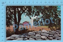 Bebe ( Souvenir Bebe Qué. , Postcard Carte Postale CPM ) P. Quebec Recto/Verso - Altri